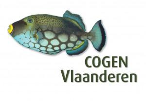 cogen_vlaanderen